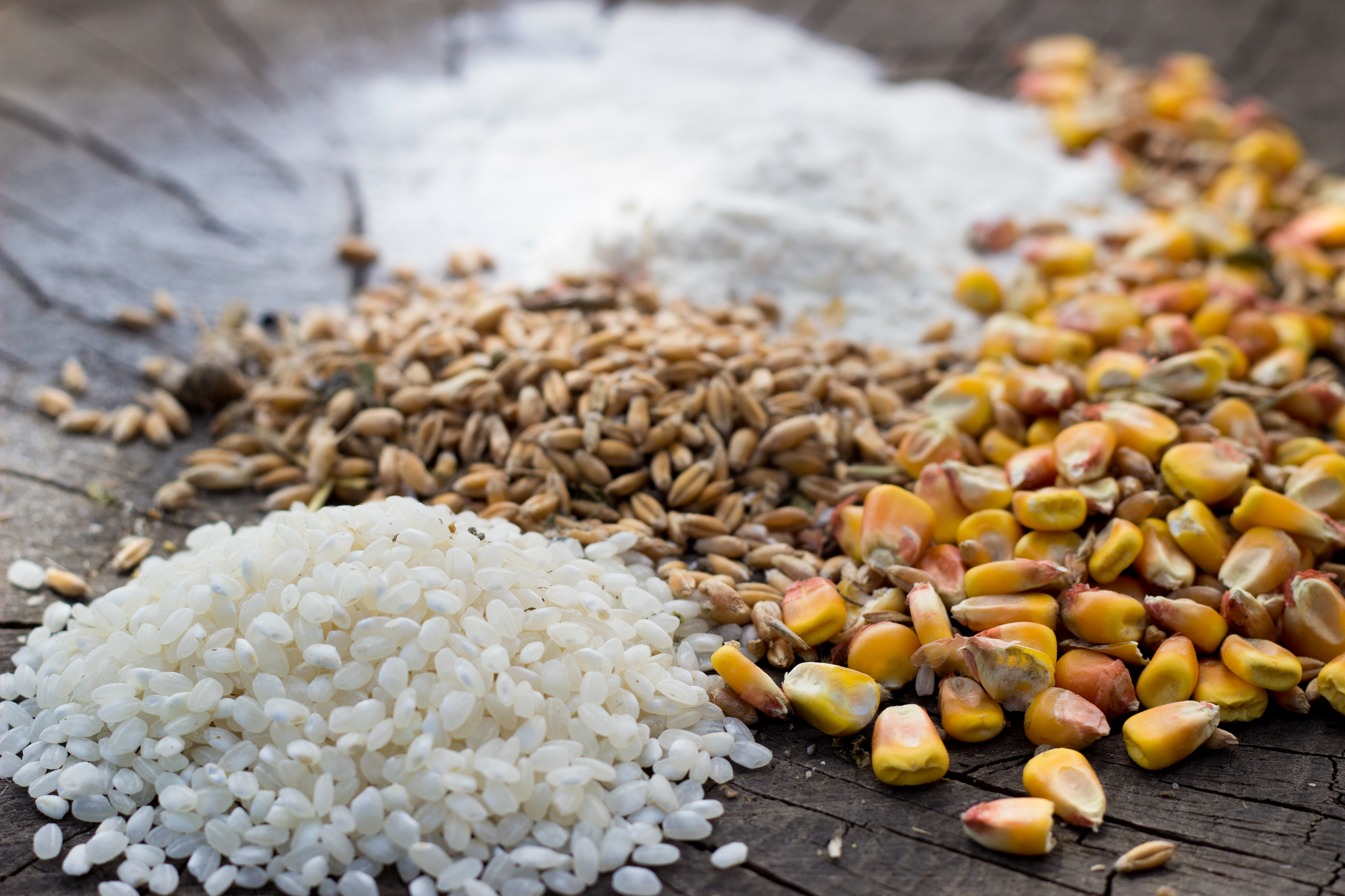 3 grãos que você precisa começar a consumir agora!